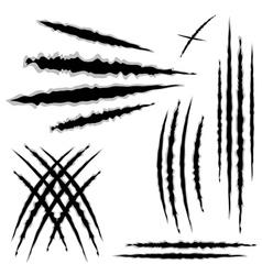 Grunge cat scratches7 vector