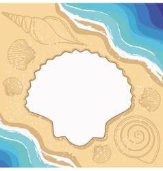 Summer background with shells waves vector image