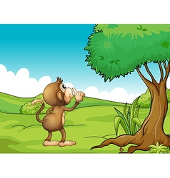 A monkey looking at the tree vector
