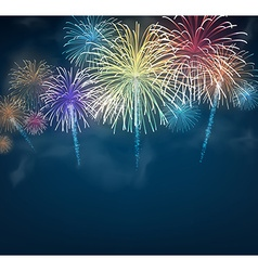 Festive colour firework background vector