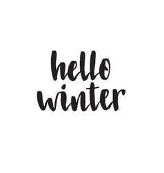 hello winter handwritten modern brush lettering vector image