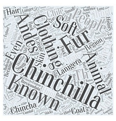 The History of the Chinchilla Word Cloud Concept vector image vector image