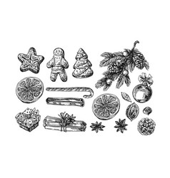 we christmas food vector image