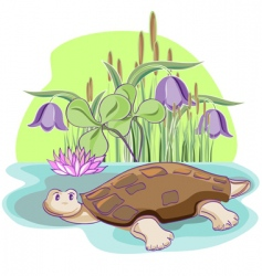 Cartoon tortoise vector