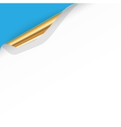 Curled White Paper Corner with Gold Back vector image