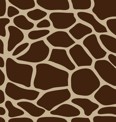 Eather of giraffe vector
