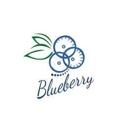 logo blueberry vector image