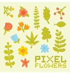 Pixel art isolated flowers set vector image