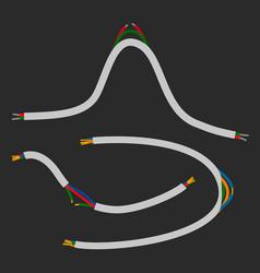 broken wire flat vector image
