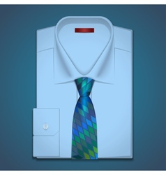 classic shirt and tie vector image