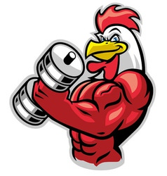 muscle rooster holding the barbell vector image