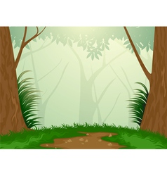 Tropical evergreen forest vector image