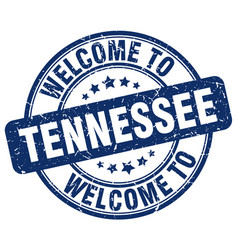 welcome to tennessee vector image