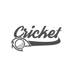 Cricket club emblem and design elements team logo vector