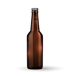 Glass Beer Brown Bottle On White Background vector image