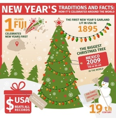 Infographic tradition of celebrating the new year vector