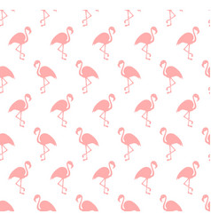 Flamingo bird background vector