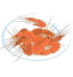 Prepared shrimps on the white plate vector