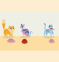 Three different cartoon cats and bowls next to vector