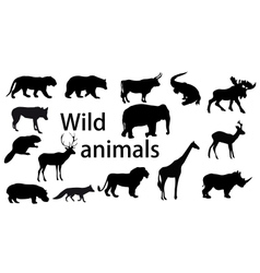 Set wild animals - vector