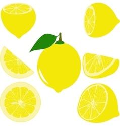 Lemon lemon slices set of lemons vector