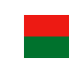 Flag of madagascar vector