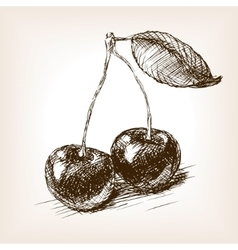 Cherry fruit sketch vector