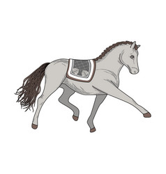 dressage horse vector image vector image