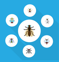 Flat icon buzz set of buzz hum tiny and other vector