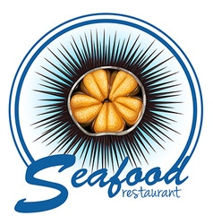 Sea urchin food label on white vector
