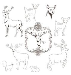 Deer christmas set vector