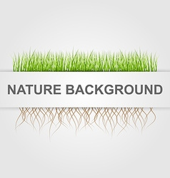 Abstract nature background green grass vector