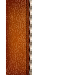 Brown leather texture background with zipper vector image vector image
