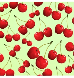 cherries on green background vector image vector image