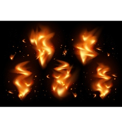 Tongues of flame background vector image