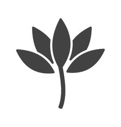 Lotus vector image