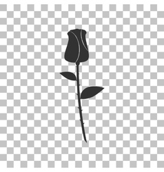 Rose sign  dark gray icon on vector