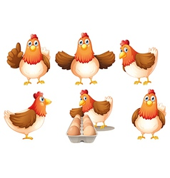 A group of fat hens vector image vector image