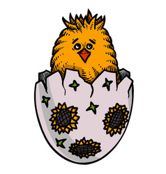 cartoon image of chick easter symbol vector image vector image