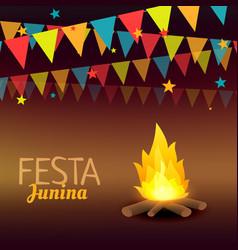 Festa junina brazil holidays vector