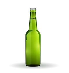 Glass Beer Green Bottle On White Background vector image vector image