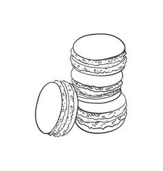 Sketch hand drawn macaroni vector