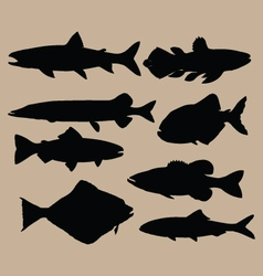 Silhouettes of fish vector