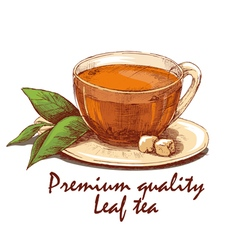 Colored hand drawn cup of leaf tea vector