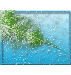 winter fir vector image