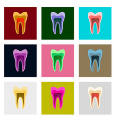 icons set in flat style tooth vector image