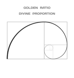 Golden Ratio Divine Proportion Ideal Section vector image