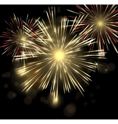 abstract Holiday Fireworks Background for vector image vector image