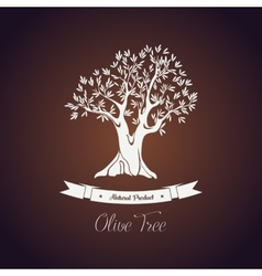 Banner or logo for olive oil tree with branch vector image vector image