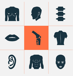 Body icons set with listen body backbone and vector